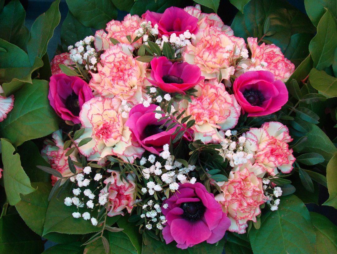 cuidados para ramos de flores - Imagenes De Ramos De Flores
